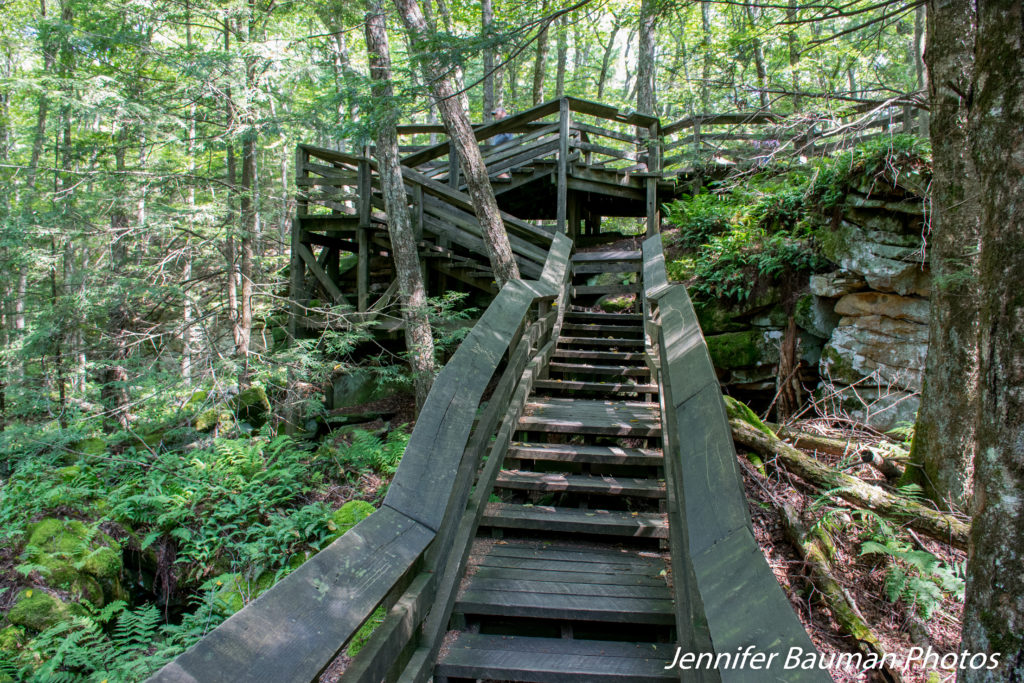 Beartown Boardwalk, Beartown State Park, WV